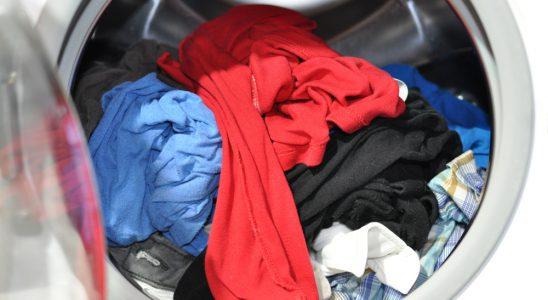 Vêtement en coton rétréci au lavage